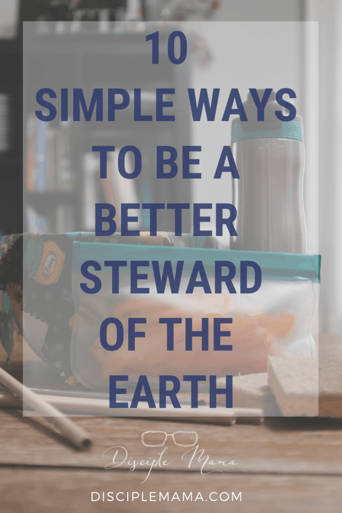 10 Simple Ways to Help the Environment