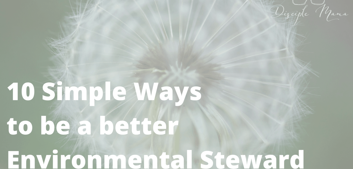10 Simple Ways to Be a Better Steward of the Earth